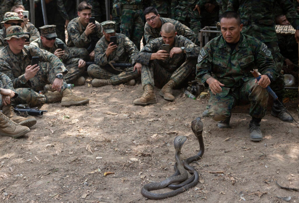 PETA is trying to save deadly snakes from bloodthirsty Marines