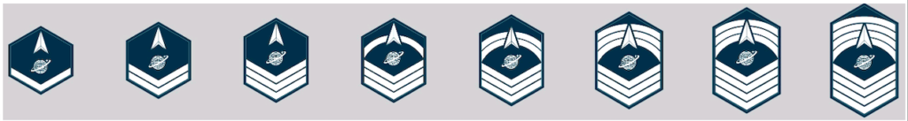 The Space Force is actually asking its Guardians to choose their own rank insignia