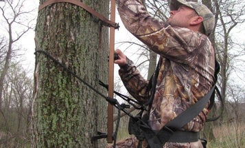 The best climbing sticks to elevate your hunt