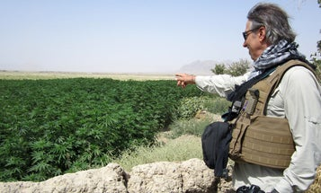 The US military needs to burn down its zero-tolerance weed policy