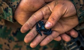 19-year-old Marine dies during 'Crucible' training at South Carolina boot camp [Updated]