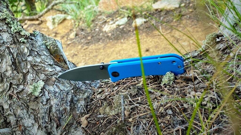 Review: the WE Banter folding knife is fun-sized, but is it fun?